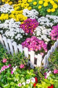 Garden box containing flowers