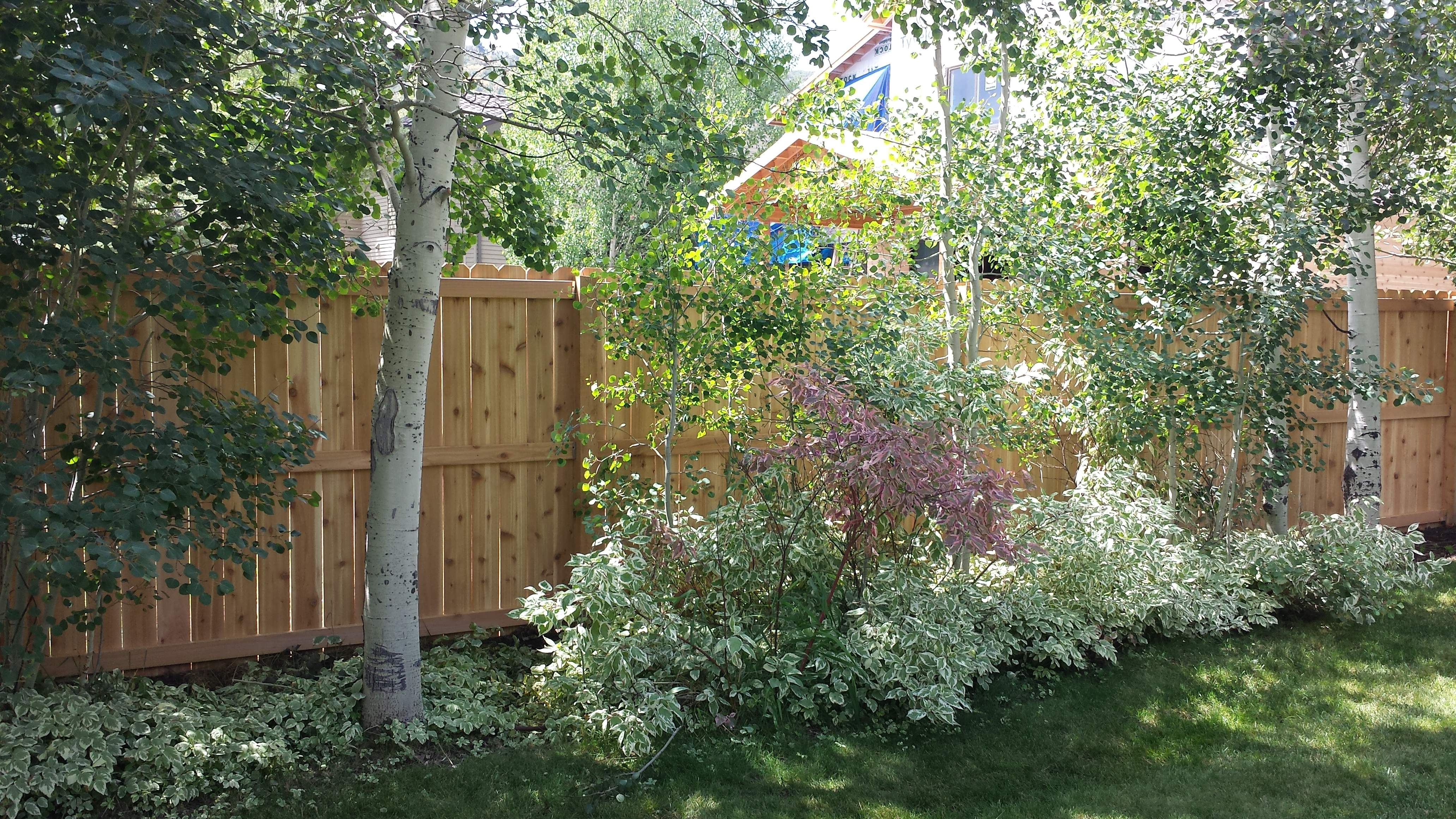 Custom Hoa Approved Wood Fences In Ut The Fence Specialist