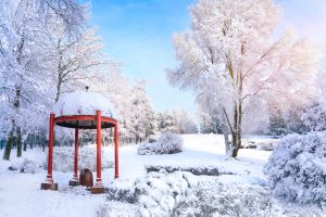 Pergola in winter backyard